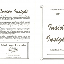 Inside Insight Flyer 001